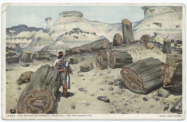 The Petrified Forest, Arizona
