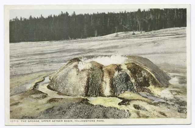 The Sponge, Upper Geyser Basin, Yellowstone National Park, Wyo.