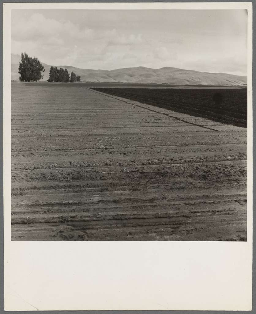 Freshly-plowed sugar beet field near King City. Shows large scale of farm operations in California