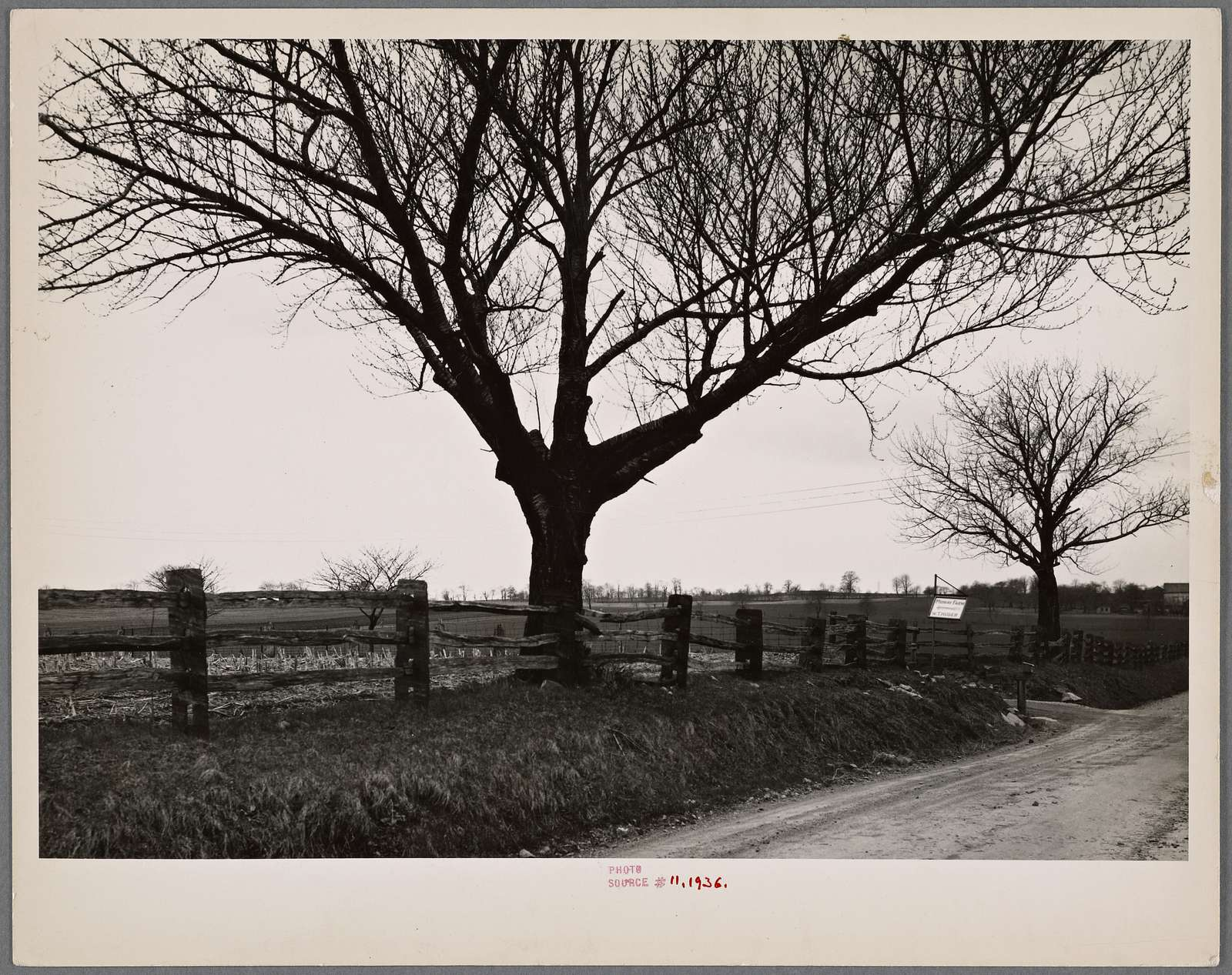 Construction detail of fence near Bethlehem, Pennsylvania. The fence posts are state.