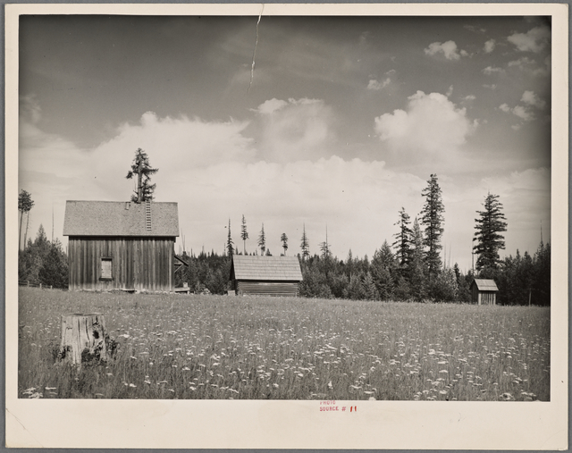 Abandoned submarginal farm. Newport, Washington.