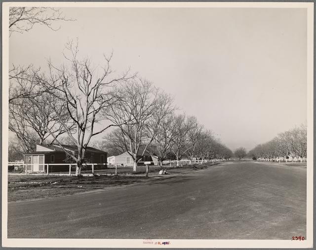 El Monte Federal Subsistence Homesteads. El Monte, California, 1936.