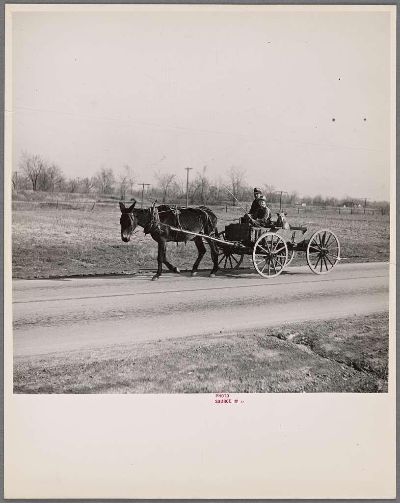 Going to town. Near Eldorado, Illinois
