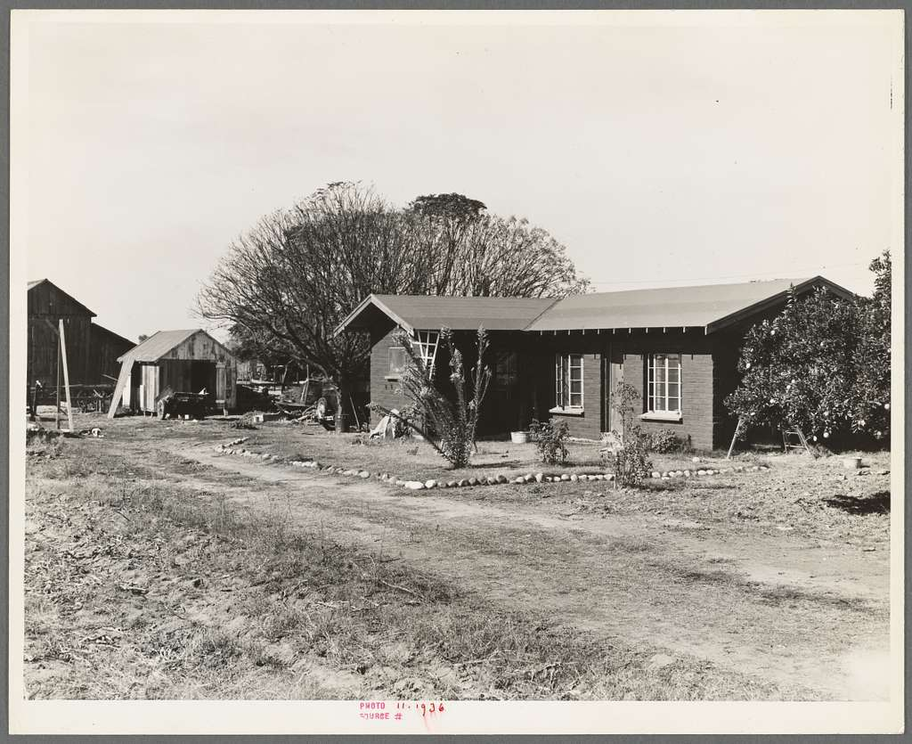 Rural rehabilitation, Tulare County, California. In 1936 this family was on relief. With a Farm Security Administration (FSA) loan of seven hundred and eighty dollars, they were able to purchase and install an irrigating pump for the vineyard, a team...