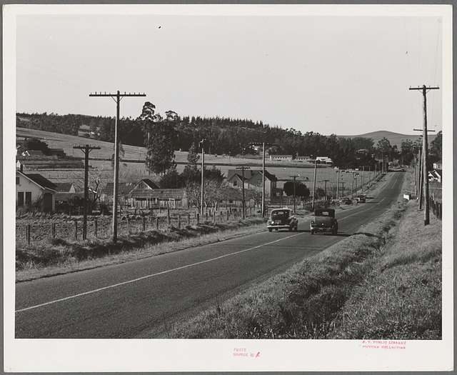 Sonoma County, California. Highway through the chicken ranch country