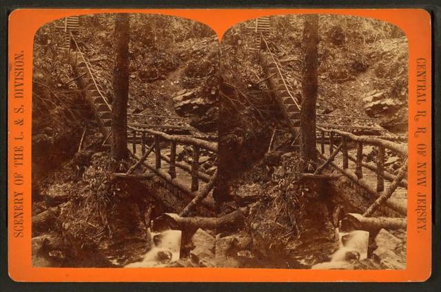 [Rustic staircase, Glen Onoko.]