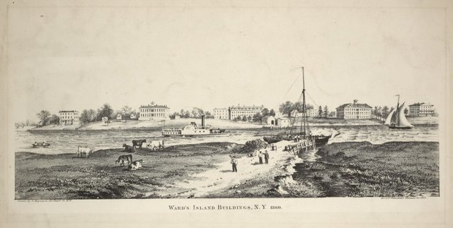 Ward's Island buildings, N.Y. 1860