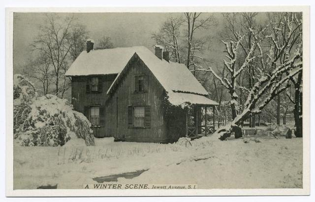 A Winter Scene, Jewett Avenue, Staten Island  [snow-covered house and landscape]