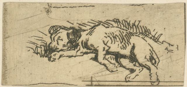 [Dog lying down.]
