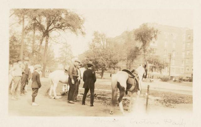 Morrisania, Ponies, Crotona Park