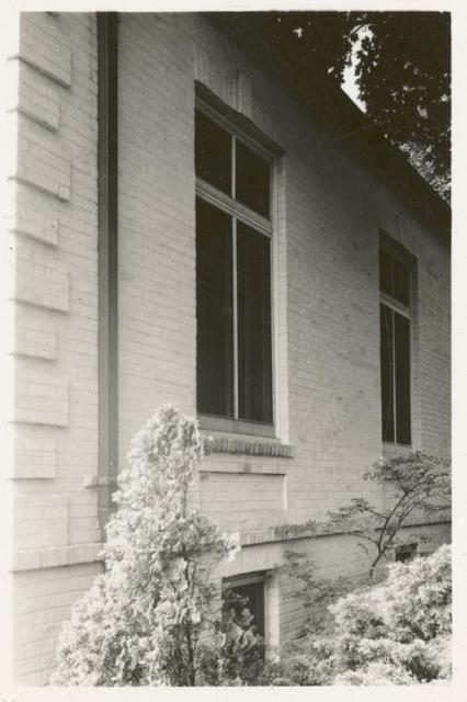 [New Dorp, Exterior, window.]
