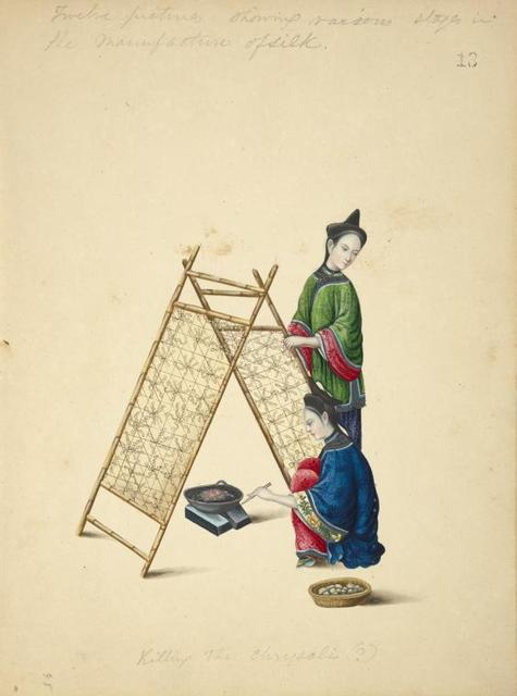 Twelve pictures showing various stages in the manufacture of silk. Killing the chrysalis (?).