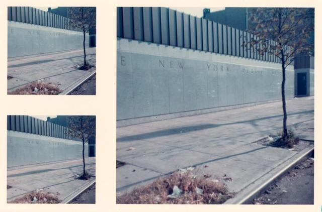 [Soundview, Front sidewalk.]