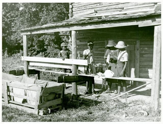 Pauline Clyburn, rehabilitation client, and her children stringing tobacco; Manning, Clarendon County, South Carolina.