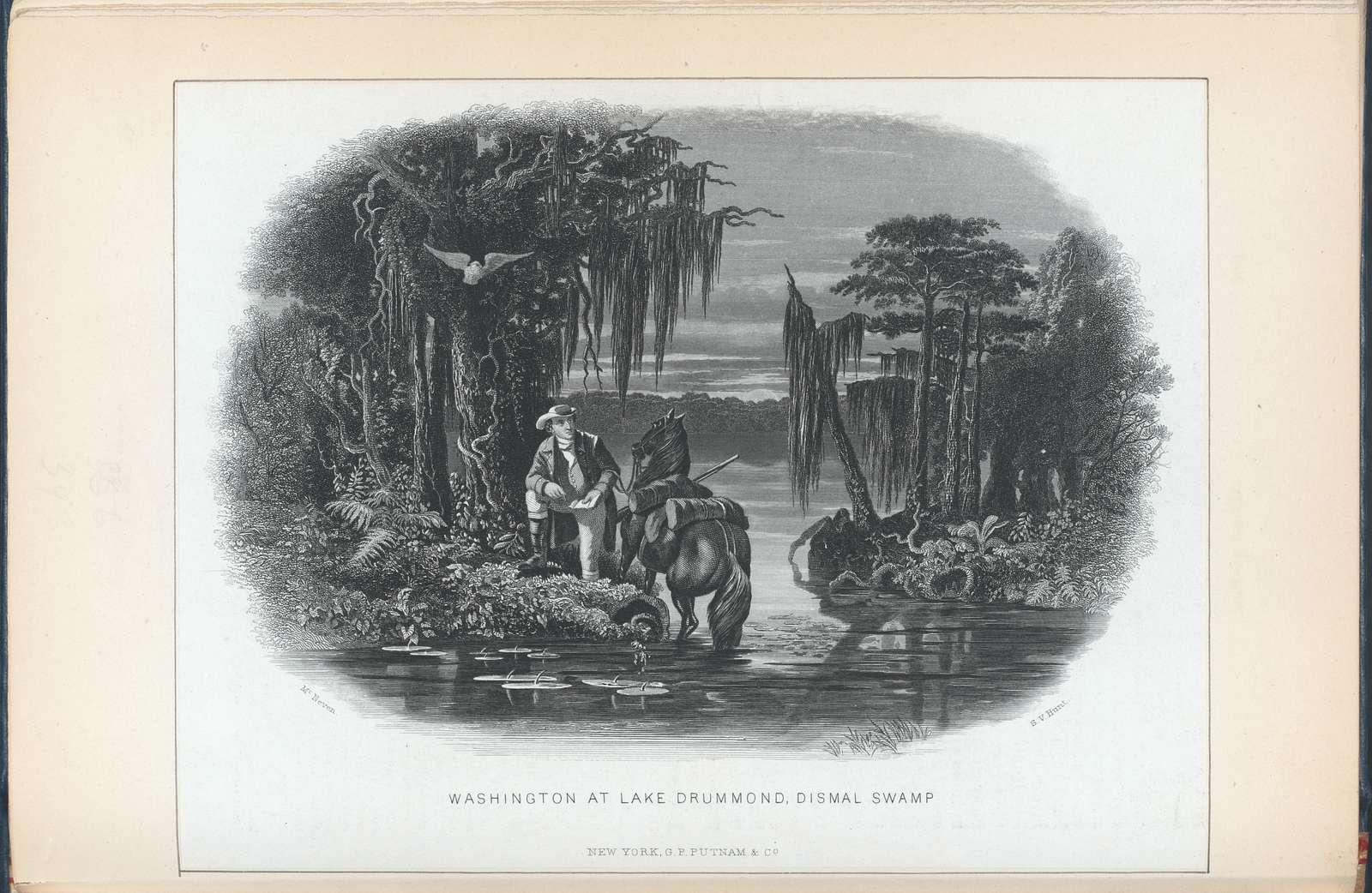 Washington at Lake Drummond, Dismal Swamp.